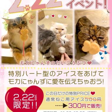 【B5】20222猫の日